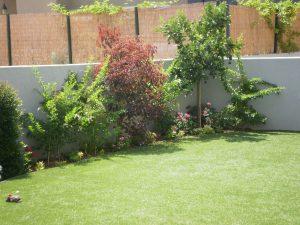 דשא מוכן